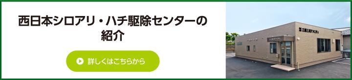 西日本シロアリ・ハチ駆除センターの紹介